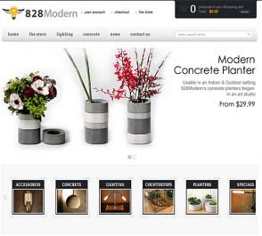 828 Modern